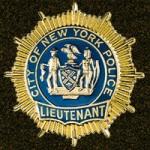 Sammelgebiet Polizeiabzeichen